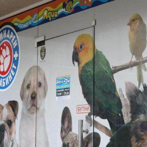 Perfo film for pet store in Plovdiv