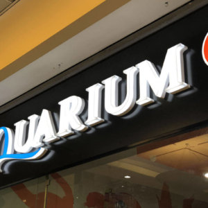Composite panel signs with acrylic channel letters